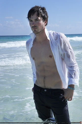 Damon Salvatore پیپر وال entitled too hot pictures