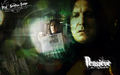 Alan Rickman wallpaper - alan-rickman wallpaper