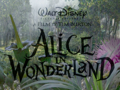 Alice in Wonderland (2010) wallpaper titled Alice In Wonderland Logo