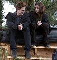 Behind Twilight - twilight-series photo
