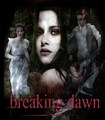 Breaking Dawn Fanarts - twilight-series photo