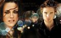 Cast New Moon - twilight-series photo