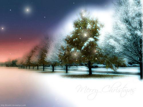 navidad Eve