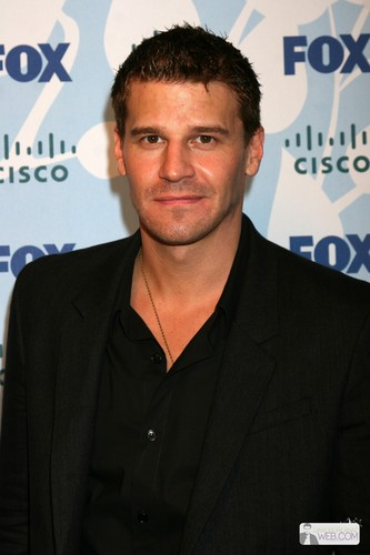 David Boreanaz.... - bones Photo