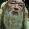 The-Magical-Life Dumbledore-albus-dumbledore-14001144-100-100