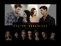 Fotos Comic Con New Moon - twilight-series photo