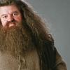 #● Personajes Cannon Profesores Hagrid-rubeus-hagrid-14001831-100-100