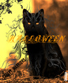 Halloween warrior - warrior-cats-of-the-clans photo