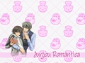 JunJou Romantica Wallpaper - junjou-romantica wallpaper