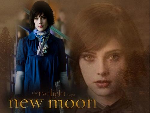 Mis creaciones New Moon