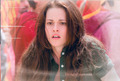 New Moon Cards - twilight-series photo