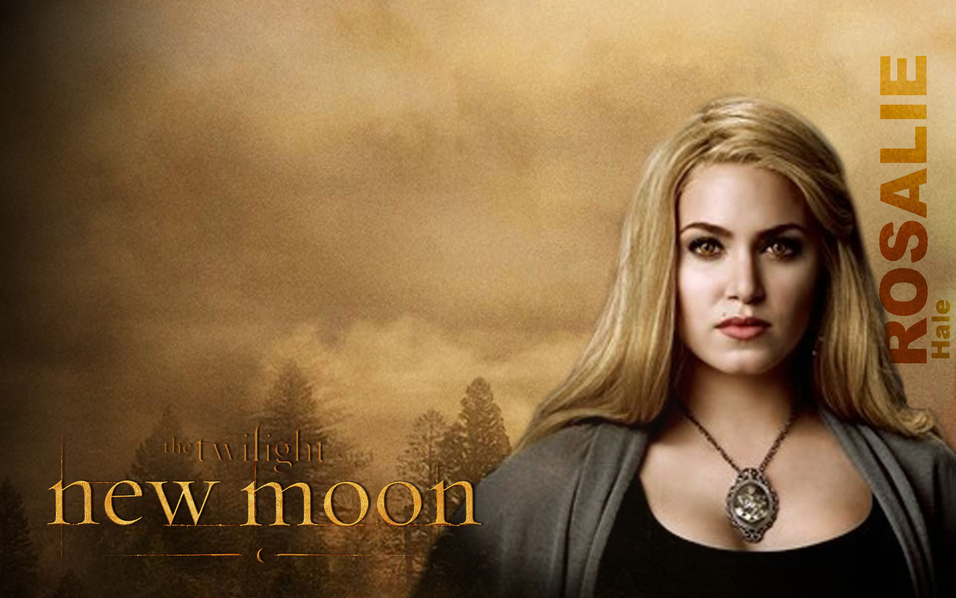 Promocionales New Moon