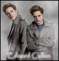 Promos Twilight Oficial - twilight-series photo