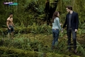 Stills New Moon - twilight-series photo