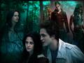 Twilight Fanarts - twilight-series photo