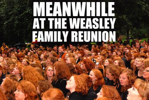 Weasley-Family-Reunion-harry-potter-vs-twilight-14059056-500-335.jpg