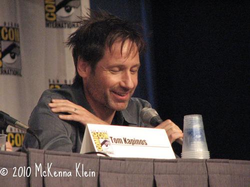 22/07/2010 - DD at Comic-Con Panel