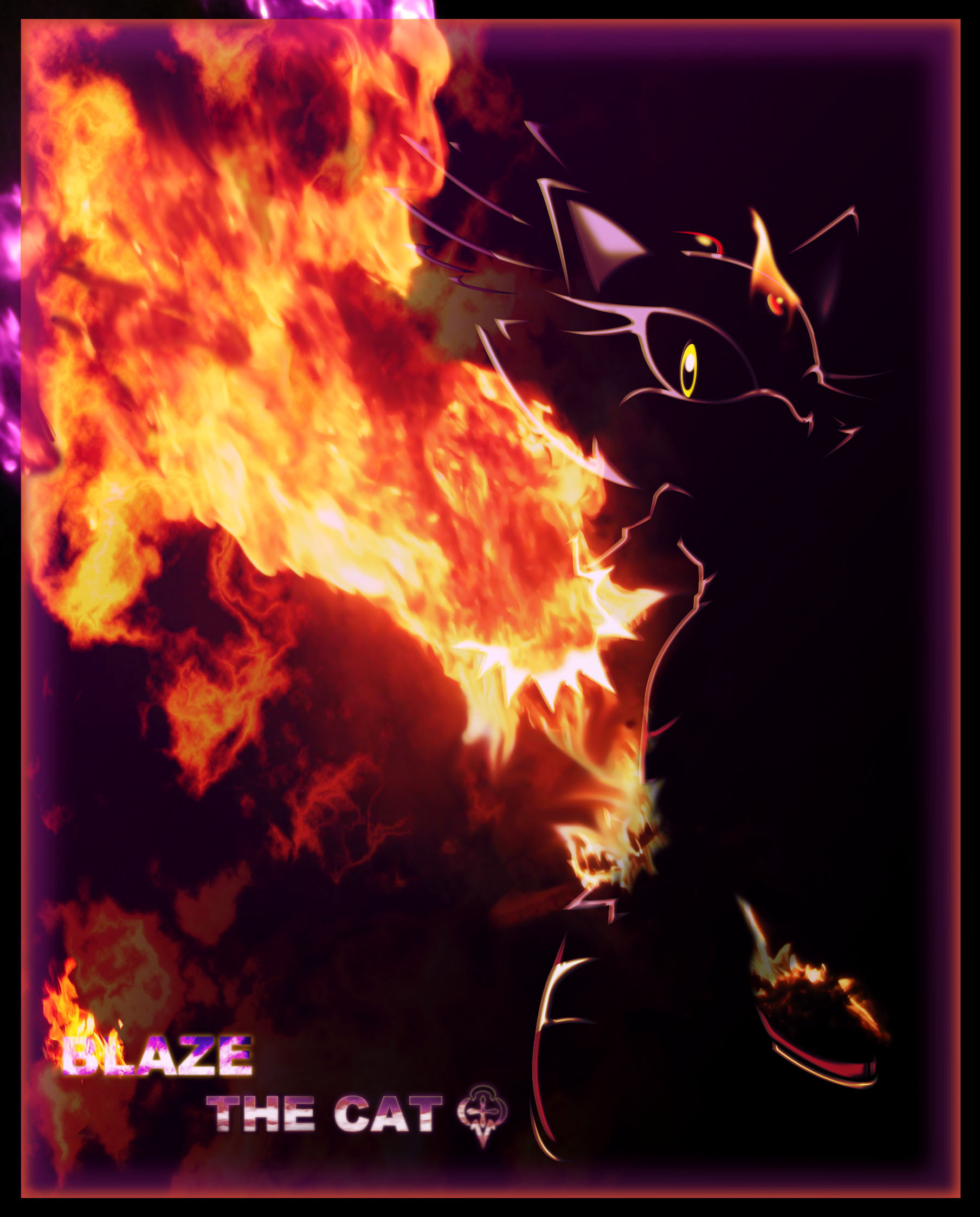 Blaze the fire cat