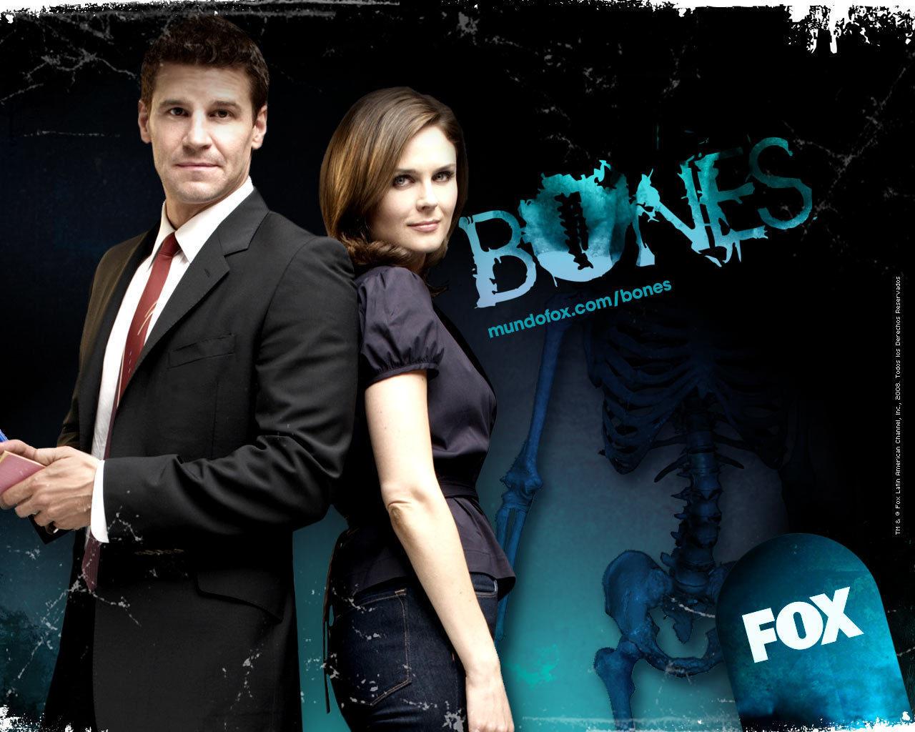 bones bones cast characters wallpaper 14121318 fanpop