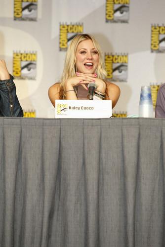 Comic Con 2010 Panel