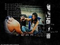 Fear - pauley-perrette wallpaper