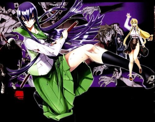 Academia Apocalipse - Colegial dos Mortos wallpaper titled Highschool of the Dead