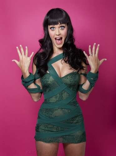 katy perry wallpaper titled Katy Perry (Victoria Will Photoshoot 2010)