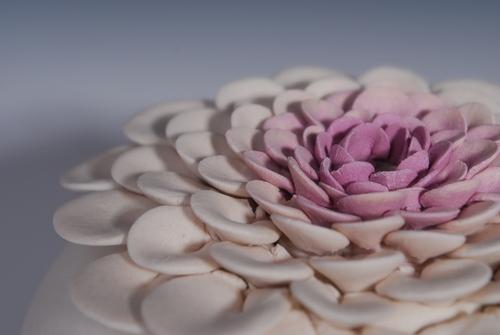 Lotus Vase Handmade Potter