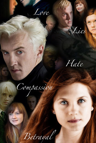 Draco and Ginny wallpaper entitled Love/Hate
