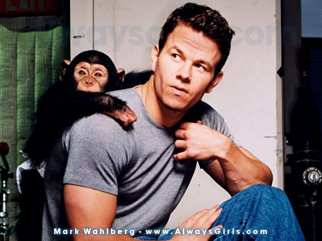Mark Wahlberg - Wallpaper Hot
