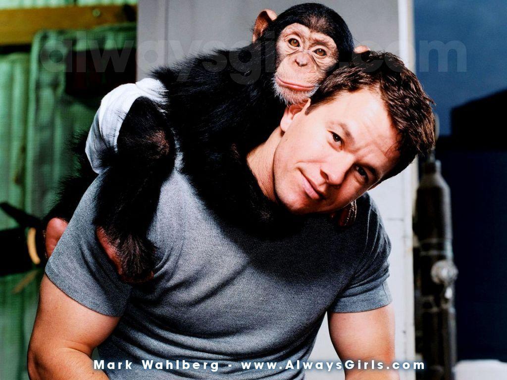 Mark Wahlberg - Mark Wahlberg Wallpaper (14128410) - Fanpop Mark Wahlberg