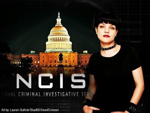 NCIS Pauley