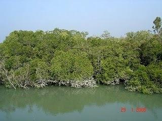 Nature of barishal, bangladesh