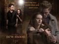 New Moon Fanarts Scene - twilight-series photo