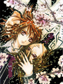 Vampire Knight - manga photo