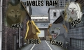Wallpaper - wolfs-rain photo