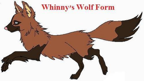 Whinny's wolf Form