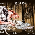Wolf Pack - twilight-series photo