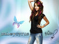 miley hannah - disney-channel wallpaper