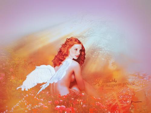 Angel Anna