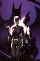 Batman and Catwoman - dc-comics photo