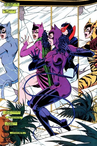 DC Comics images Catwoman HD wallpaper and background ...