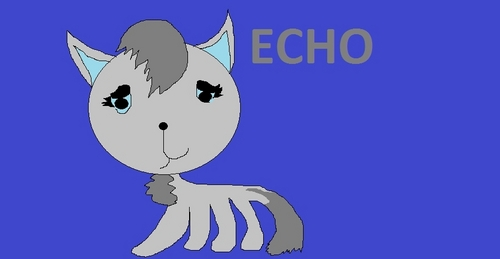 Echo real cat.