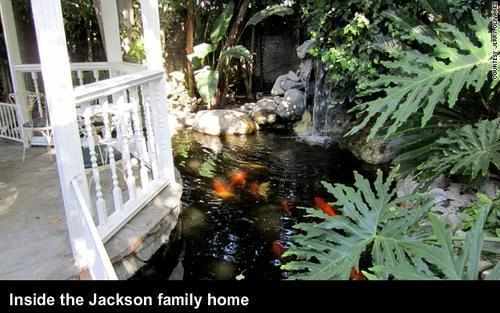 Inside the Jackson family ホーム