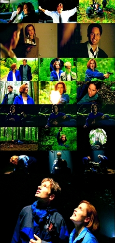 The X-Files wallpaper entitled Mulder/Scully Picspam