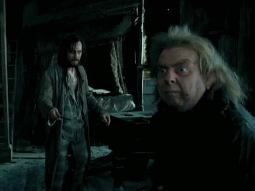 Padfoot & Moony vs Wormtail