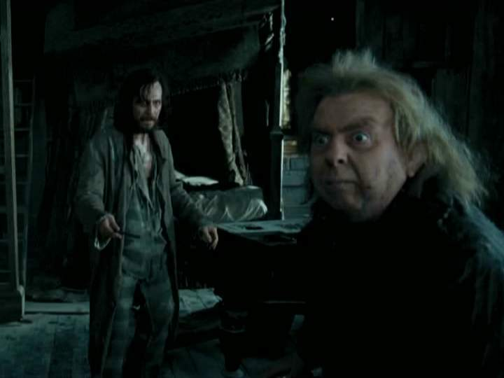 Padfoot & Moony vs Wormtail - Sirius Black Photo (14289295 ...