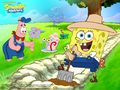 Planting - spongebob-squarepants wallpaper