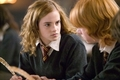 romione - Harry Potter & The Goblet Of fogo - Promotional fotografias