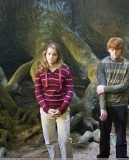 Romione - Harry Potter & The Order Of The Phoenix - Behind The Scenes & On The Set